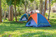 Dome tents - 82108531