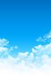 Springtime sensation - 82113568