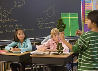 Boy explaining about trees to classmates