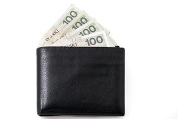 pełny portfel