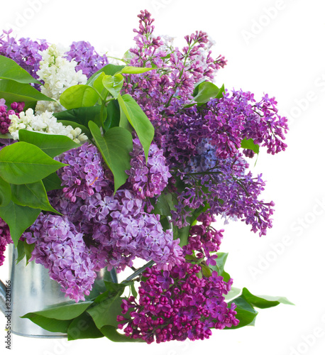 Poster Lilac Lilac in vase