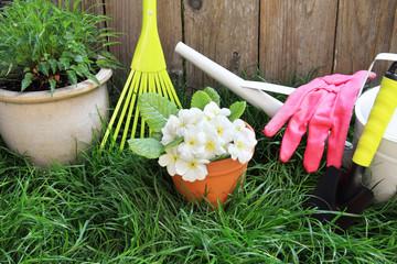 Spring gardening tools