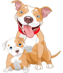 Pit-bull mother and cub