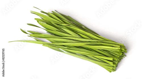 Leinwanddruck Bild ein Bündel Weizengras