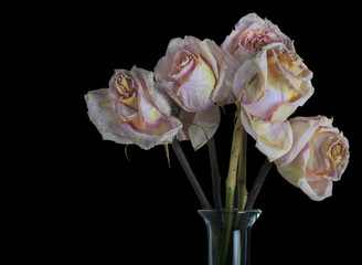 A Vase of Old Roses