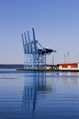 Container Cranes at the Port of Tacoma