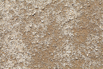 Natural detail and background of brown soil ..