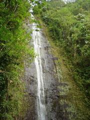 オアフ島 マノア滝