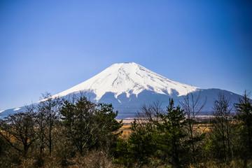 The Blueish Mountain Fuji, Japan