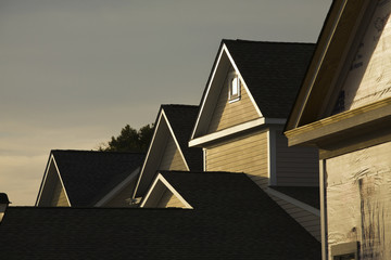 Rooflines At Sunset