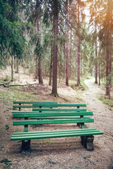 Seats in the forest