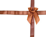 Shiny Ribbon brown (bow) gird box frame isolated on white backgr poster
