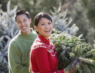 Asian couple carrying Christmas tree