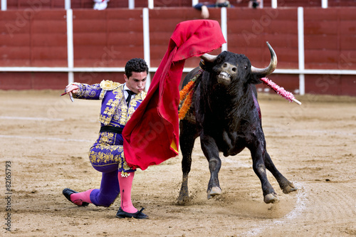 Staande foto Stierenvechten Matador in the bullring, the bull fighting