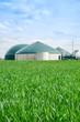 Leinwanddruck Bild - Biogasanlage im Hochformat, davor grünes Getreidefeld