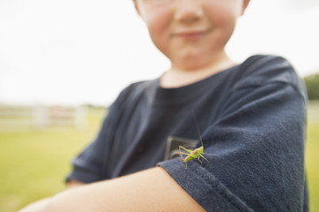 Caucasian boy playing with insect outdoors