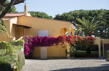 portugal villa with bougainville flowers