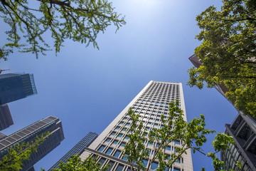 東京丸の内の高層ビル