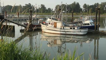 Moored Fishboats, Boat Departs, Steveston Morning