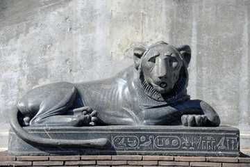 black marble lion statue located the in Vatican Museums.