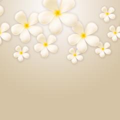 Frangipani design collage