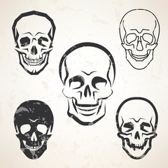 skull vector sketches set in different styles
