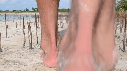 Bare foot man walks among young mangroves on tropical beach