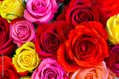 Aluminium Rozen Roses background
