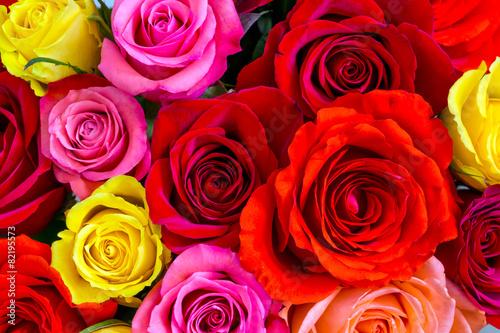 Zdjęcia na płótnie, fototapety, obrazy : Roses background