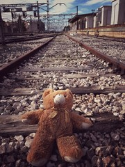 bear on the railroad