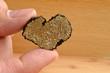 Heart shaped truffle in hand - 82210188