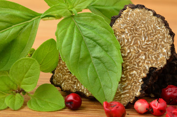 Black truffle close up