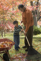African father and son raking leaves