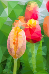 Triangular low poly style of tulip