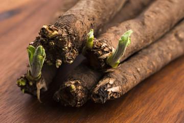 salsify vegetables on wood