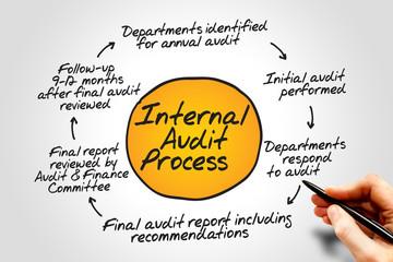 Internal Audit Process flow chart, business concept