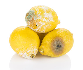 Heap of decayed lemon isolated on white background.
