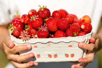 Close-up of girl holding box of strawberries