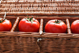 Four tomatoes with dew
