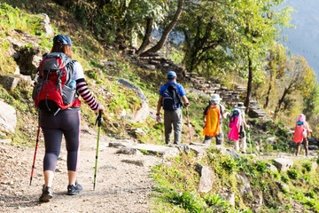 A group of people trekking through a scenic trail