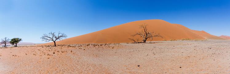 wide panorama Dune 45 in sossusvlei Namibia