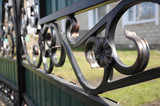 Iron fence flower detail - 82261319