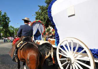 Carretas y jinete a caballo, Romería del Rocío, España