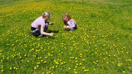 two girls picking flowers in the field