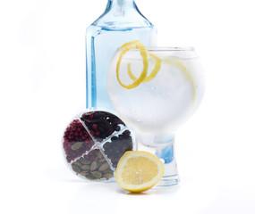 full gin & tonic
