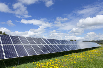 Solar Power Station on the spring flowering Meadow