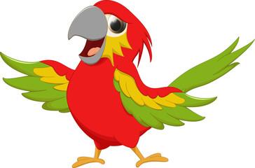 happy macaw bird cartoon