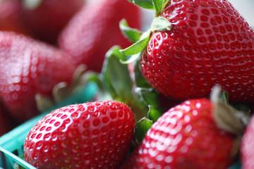 Strawberries in plastic baskets