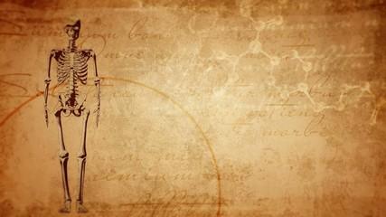 Ancient medicine background, skeleton