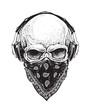 Skull with Headphones - 82278155
